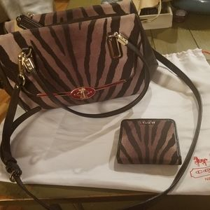 Coach zebra print bag and wallet set